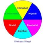 optimal health, personal training, Winchmore Hill